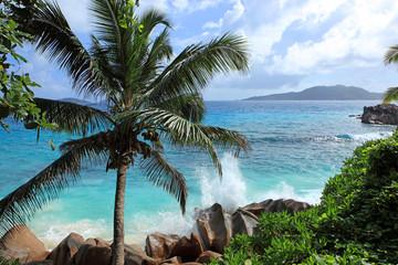 vagues et écume de la côte sauvage des seychelles