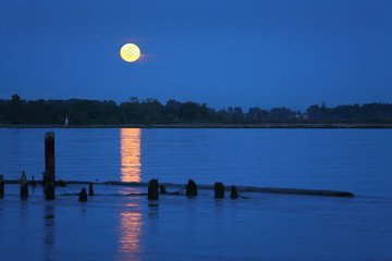 Fraser River Moonrise