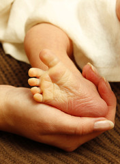 legs one cute newborn little baby in mother's hands