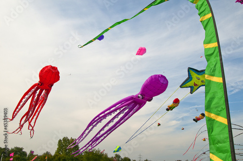 Foto op Aluminium Luchtsport Different kites in the sky