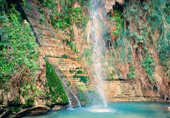 David's waterfall at Ein Gedi Nature Reserve