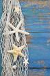 Maritimer Holz Hintergrund in blau mit Muscheln