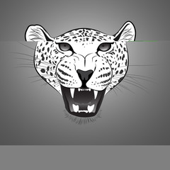 Cheetah Vector Cartoon