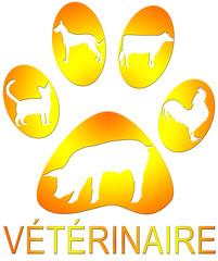 affiche vétérinaire : silhouettes d'animaux