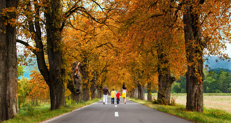 Family of 4 taking a walk in beautiful alley with  Autumn colors