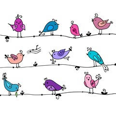 Set of cute birds in vector. Cartoon collection.