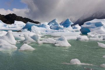 Icebergs - Largo Grey - Patagonia - Chile
