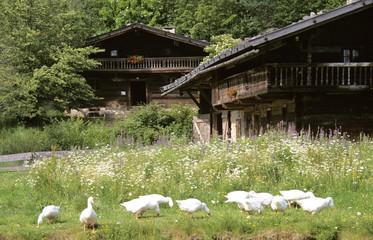 Deutschland, Bayerischer Wald, Bauernhof-Museum in Tittling