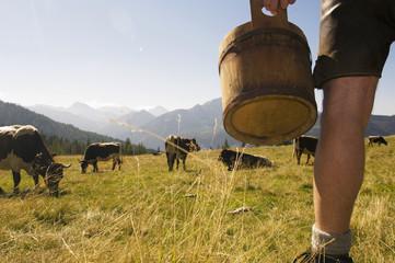Bauer auf der Weide, niedrige Abschnitt