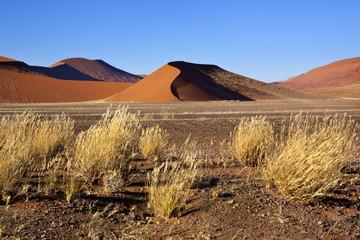 Namib-nuakluft Desert - Sossusvlie - Namibia