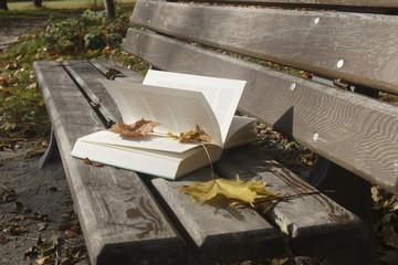 Buch auf der Bank