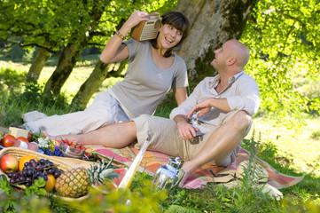 Paar beim Picknick unter einem Baum, lächelnd