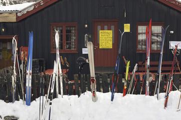 Norwegen, Rondane National Park, Ski und Stöcke