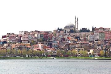 Istanbul Skyline on White Background