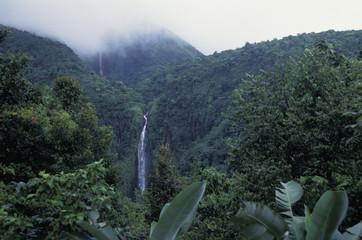 Guadeloupe, Wasserfall Nationalpark
