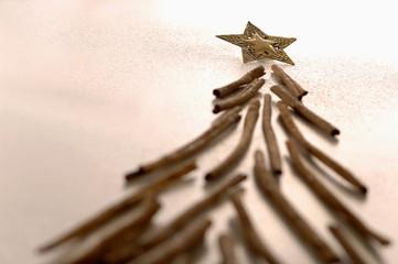 Weihnachtsstern und Zimtstangen