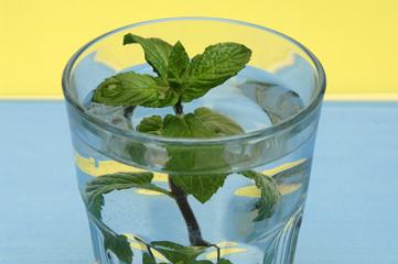 Pfefferminze im Wasserglas