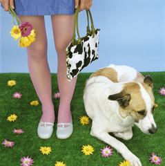 Junge Frauenbeine mit Hund