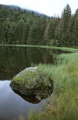 Deutschland, Bayerischer Wald, Rachelsee