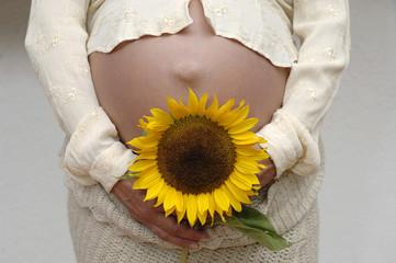 Schwangere Frau mit Sonnenblumen