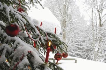 Brennende Kerze am Weihnachtsbaum mit Schnee