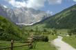 Österreich, Berglandschaft mit Feldweg