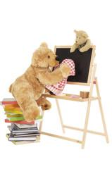 Teddybär wischt Tafel