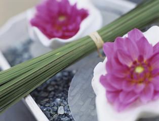 Rosa Dahlien und Grasbüschel auf Tablett
