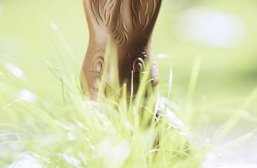 Schokolade, Kaninchen hinter Gras