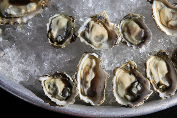Opened oysters on ice