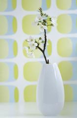 Kirschblüte in einer Vase