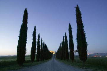 Italien, Toskana, Straße Dämmerung