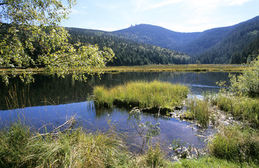 Kleiner Arbersee, Bayerischer Wald, Deutschland