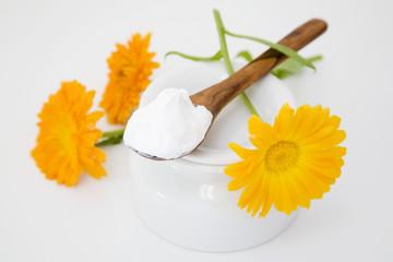 Ringelblumen und Ringelblumen-Creme auf Creme Topf