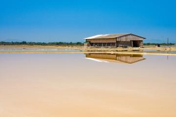 Dunaliella salina in salt evaporation pond and wooden storehouse