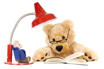 Teddybär liest Buch