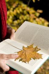 Person hält Buch mit herbstlichem Blatt
