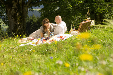 Paar beim Picknick auf der Wiese