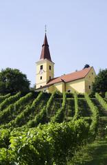 Österreich, Kapfenstein, Steiermark, Weingut