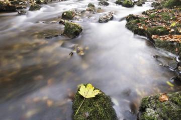 Wasser laufen über Felsen im Herbst