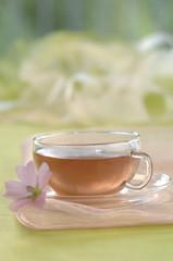 Malve Tee in der Tasse
