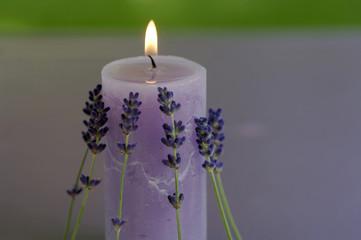 Brennende Kerze, Lavendel