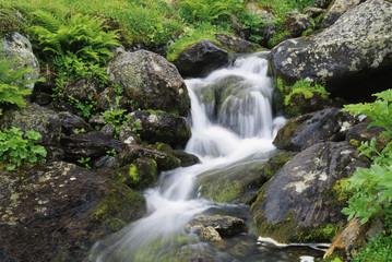 Schweden, Sarek Nationalpark, Gebirgsbach