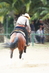 cowboy on galloping horse