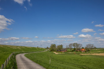 Bicycle path along the dollard route in Ostfriesland