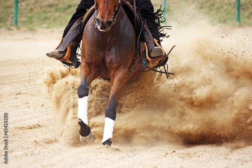 Papiers peints Equitation galloping horse in reining competition