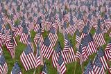 Fototapety Numerous commemorative US flags