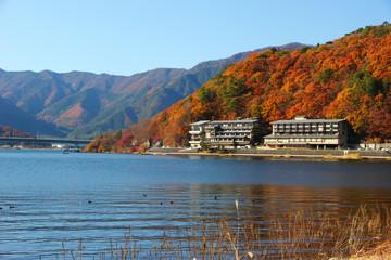 Hotels near ocean
