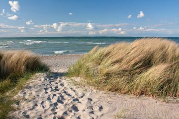 Weg zum Strand durch Dünen an der Ostsee bei Heiligenhafen