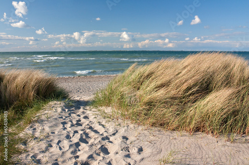 Weg zum Strand durch Dünen an der Ostsee bei Heiligenhafen - 65438483